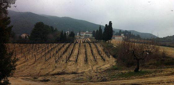 The vineyards up the hills and at large the Saint Pateleimon monastery group (photo Carlos Arruda)